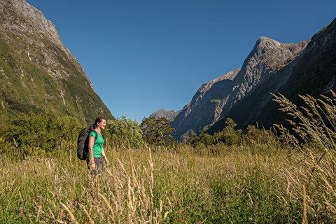 The Prarie on the  Milford Track