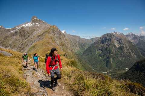 Reaching the highest point - Milford Track guided walk