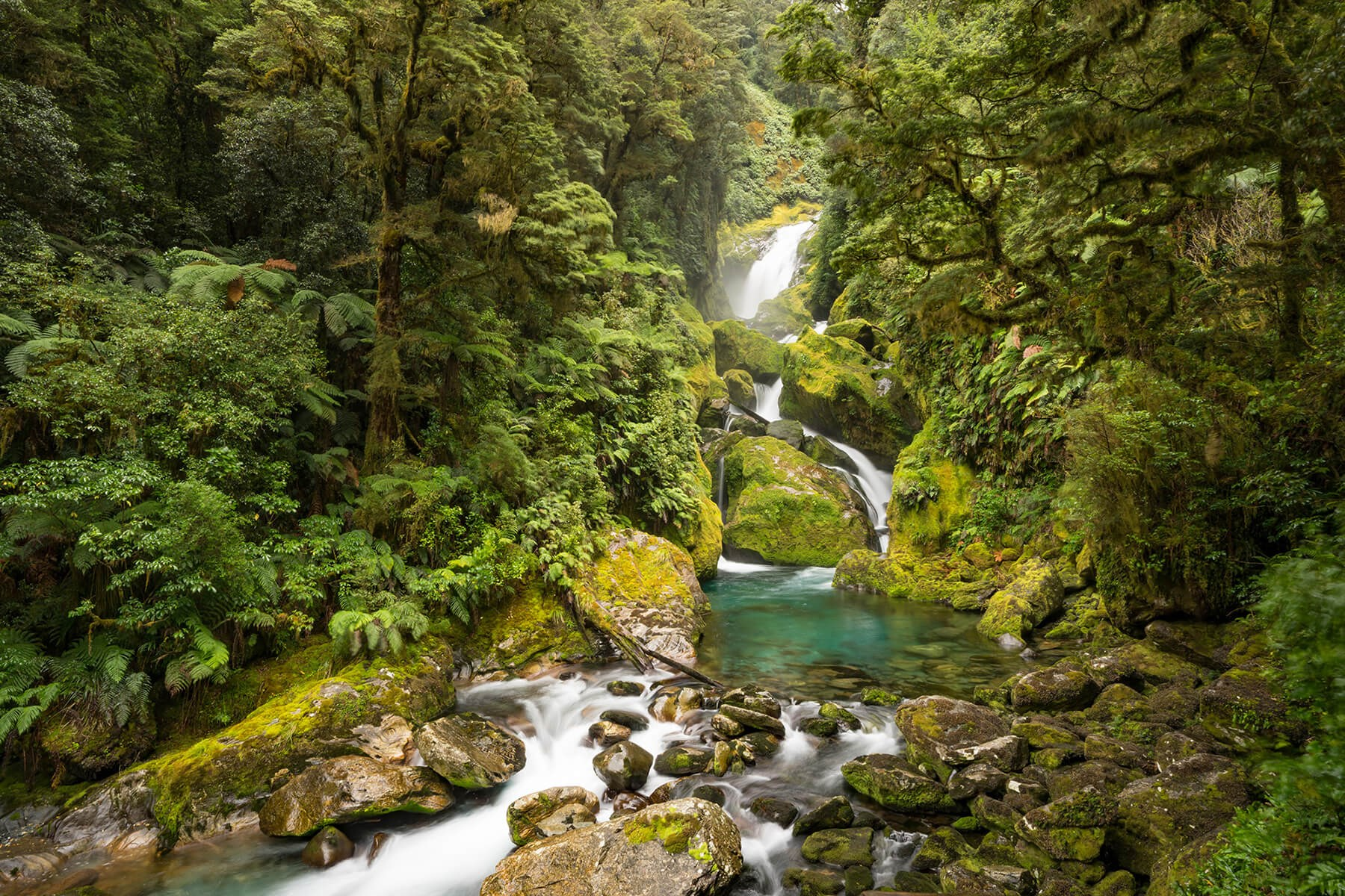 Mackay Falls on the Milford Track guided walk